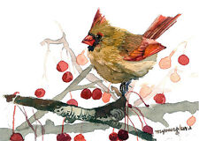 ACEO Limited Edition - A November cardinal, Bird art print of an ACEO watercolor