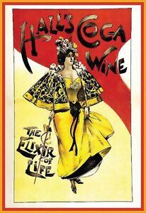 Drink Halls Coca Wine Elixir of Life Resturant Bar Pub Cafe  Poster Print