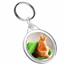1 x Baby Bunny Rabbit Pet Animal - Keyring IR02  Dad Kids Birthday Gift #14578