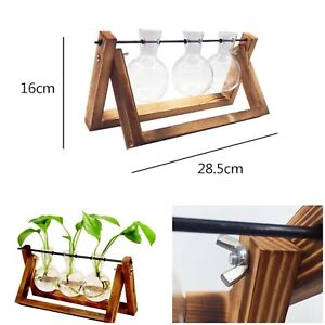 3 x Bulb Vases with dark Wooden Stand. Vintage Plant Stand Hydroponic Planter