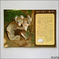 Koala Tourist 1986 Postcard (P476)