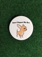 Anti-trump Deportation Chihuahua Pin-Back  2 1/4 in. SHIPS FREE
