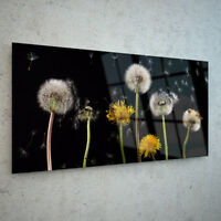 ANY SIZE Wall Art Glass Print Canvas Picture Large Large Dandelion Flower p36424
