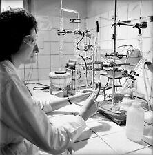 NANTERRE c. 1960 - Laboratoire Fraysse L' Opothérapie - Négatif 6 x 6 - N6 IDF31