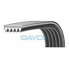 Dayco Poly V-Cintura a costine 5pk1545 5 nervature 1545mm Ventola Ausiliaria Alternatore