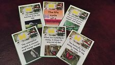THE LIFECYCLE OF A BUTTERFLY - DISPLAY CARDS EYFS- CLASS TOPIC GROUP DISCUSSION