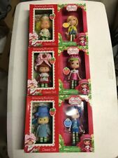 Strawberry Shortcake Blueberry Strawberry Muffin Figure Doll Set Then And Now!