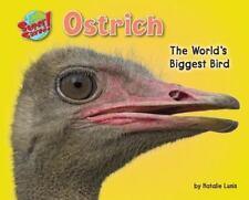 Ostrich: The World's Biggest Bird (Supersized!)-ExLibrary