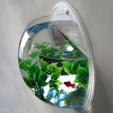 GLASS / PERSPEX FISH TANK WALL MOUNTED BOWL AQUARIUM HANGING PLANT & STONES