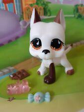 """Pet shop Chien Dogue Argentin * Petshop Danois Dog  #750 """" NEUF """" +Accessoires"""