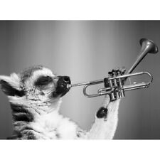 Lemur Playing Trumpet Black White Canvas Wall Art Print Poster