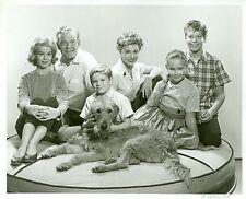 AHNA ANNA CAPRI TIMOTHY ROONEY ROOM FOR ONE LESS CAST ORIGINAL 1962 ABC TV PHOTO