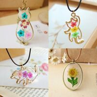 Natural Real Dried Flower Lovely Cat Glass Pendant Necklace Women Jewelry Gift