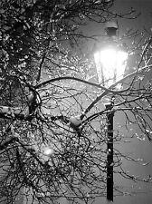 SOLITARIO STREET LAMPADA NOTTE INVERNALE NERO BIANCO FOTO ART PRINT POSTER bmp869a