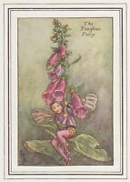 CICELY MARY BARKER c1930 THE FOXGLOVE FAIRY Painting Vintage Art Book Print