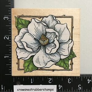 All Night Media Magnolia Wood Mounted Rubber Stamp Flower