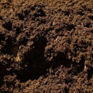 Peat Soil Substrate For Spider's, Scorpion's, Millipede's Inverts 1.9kg Bags