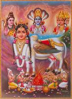 "Hindu Divine Cow Kamdhenu Pooja, Brahma, Vishnu, Shiva - Big POSTER - 20""x28"""