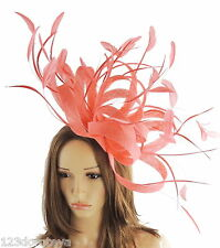 Coral Fascinator for Ascot, Weddings, Proms, Derby, Formal Events O1
