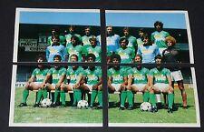 232 233 234 235 AS SAINT-ETIENNE ASSE VERTS FOOTBALL BENJAMIN EUROPE 1980 PANINI