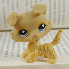 """IN HAND LPS LITTLEST PET SHOP MINI 3"""" FIGURE TOY Collie pubby dog #1194"""