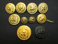 """10 Vintage Military Eagle Buttons Brass - Gold - Composite - Sizes 1/2"""" to 1"""""""