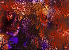 ACEO Acrylic Pour Abstract Jungle Man Animal Patterns Painting Art Penny StewArt