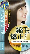 utena PROQUALITE Hair Straightening Set for Long Hair Smooth keep Import JAPAN