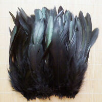100/300pcs WholesaleBeautiful Rooster Tail Feather 8-15cm/3.15-5.9inch 5Colors