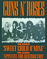 Guns N' Roses Concert Poster, 8x10 Color Photo