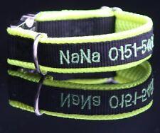Halsband gelb schwarz bestickt mit Name Telefonnummer neongrün
