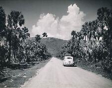 MEXIQUE c. 1950 -Auto Palmiers Route Pan Américan Highway Guadalajara- Div 11260