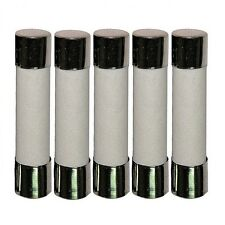 "5 x 15A 125/250V Ceramic Fuse Slow Blow 6x30mm (1/4""x1-1/4"") USA Free Shipping!"