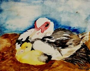 MUSCOVY DUCK Hen and Duckling 4 x 6 PRINT Farm Country Art by Artist KSams
