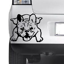 French Bulldog Vinyl Sticker Decal, Car Decal, Bumper, Laptop,Window, Wall JMD..