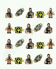 WWE Seth Rollins Nail art water decals Free shipping