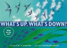 What's Up, What's Down? by Lola M. Schaefer (2002, Hardcover)