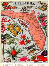 Florida The Everglades State Map United States Travel  Advertisement Poster