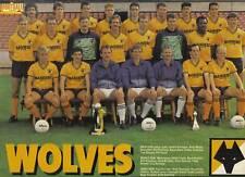 WOLVES FOOTBALL TEAM PHOTO>1988-89 SEASON