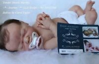 Reborn realistic  baby girl Journey Sold out  Laura Lee Eagles art doll