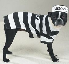 Casual K9  Prison Pooch Prisoner Dog Halloween Costume Pet Outfit Stripes