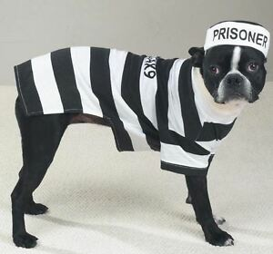 Casual K9  Prison Pooch Prisoner Dog Halloween Costume Pet Outfit Stripes