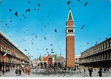 BT1700  venezia piazza s marco  volo di colombi  italy
