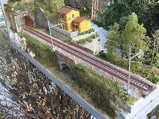 diorama espositore plastico ferroviario ho  ART PD 04