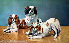 Antique Art~Cavalier King Charles Spaniels With Bows~New Large Note Cards