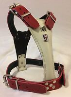 BRITISH BULLDOG HARNESS REAL LEATHER WHITE & RED BRITISH FLAG