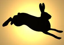 Shabby Chic in plastica Stencil Lepre Bunny Coniglio Jumping Design 3 A4 297x210mm Muro