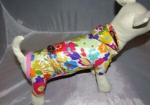 5849_Angeldog_Hundekleidung_Hunderegenkleidung_REGEN_Raincoat_Chihuahua_RL21_XXS