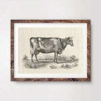 DAIRY COW FARM ART PRINT Agricultural Poster Home Decor Countryside Wall Picture