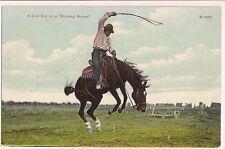 A Cow Boy On A Bucking Bronco Horse Lasso Western Postcard Series 1052